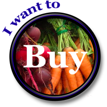 buyer button smaller